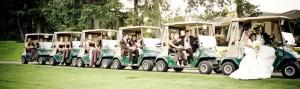 panaramic golf carts
